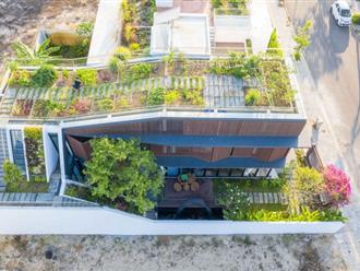 Ngắm ngôi nhà xanh mát, tiết kiệm 30% năng lượng của vợ chồng Đà Nẵng