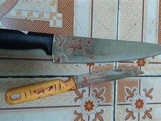 Mâu thuẫn lúc ăn nhậu, 2 anh em ruột đâm nhau cùng tử vong
