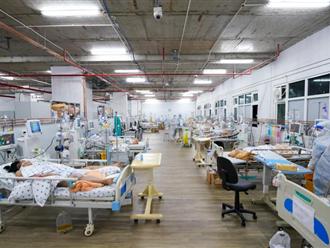 Cứu thai phụ F0 phổi hỏng nặng nhưng thai nhi không thể chào đời