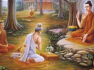 Phật dạy: Làm người, đừng bao giờ phạm phải 5 ác nghiệp này